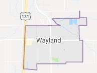 wayland homes for sale